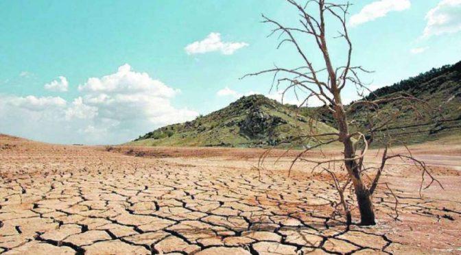 FAO: Para 2050 podría degradarse hasta 90% de los suelos debido a la erosión, afectando al suministro de agua (La jornada)
