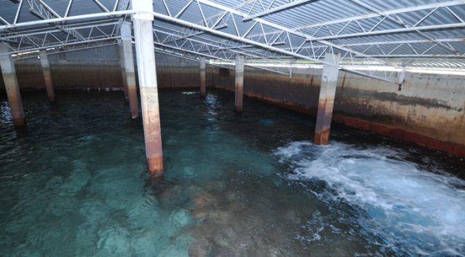 Tamaulipas: Faltan  más lluvias para aumentar nivel de los mantos acuíferos (Expreso.press)