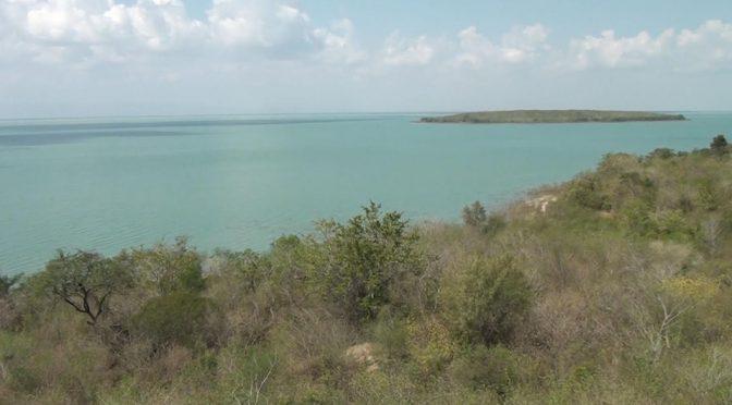 Tamaulipas: Altamira podría abastecerse de agua traída de El Mante (Milenio)