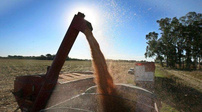 Reutilizar el agua: una oportunidad ante los retos de la agricultura (La nación)