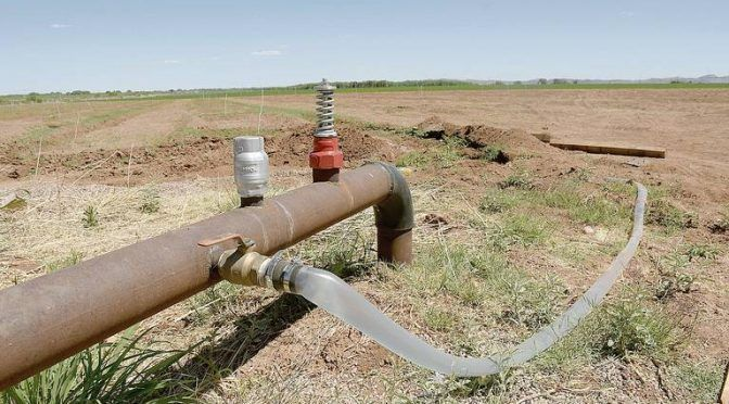Chihuahua: Roban agua productores (El Heraldo de Chihuahua)