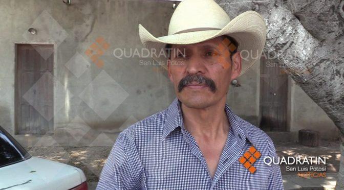 San Luis Potosí: Producción agrícola paralizada por sequía en zona media (Quadratín)