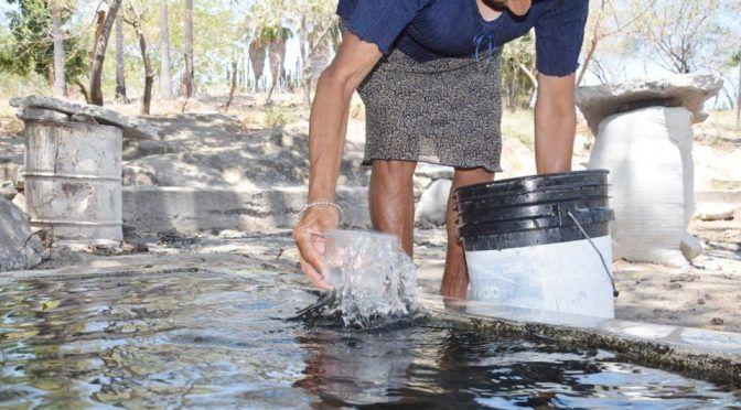 Sinaloa: Sequía ya afecta a Choix: piden ayuda a la Conagua (Debate)