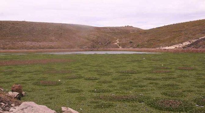 San Luis Potosí: tiene la presa San José agua para 120 días (Pulso)