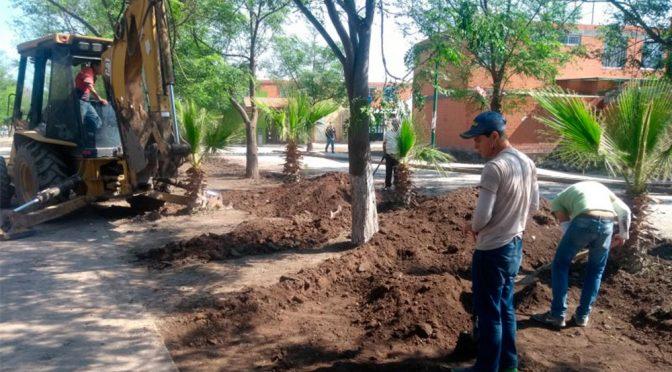 Puebla: Tromba genera malos olores y contaminación en Tehuacán (El Popular)