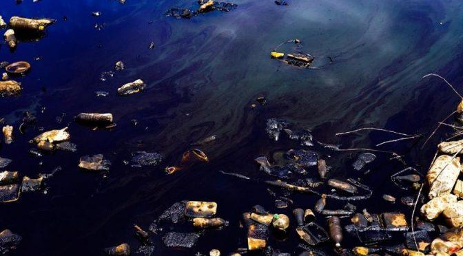 Baja California: Desastre ecológico en canal del ejido Sinaloa (El Imparcial)
