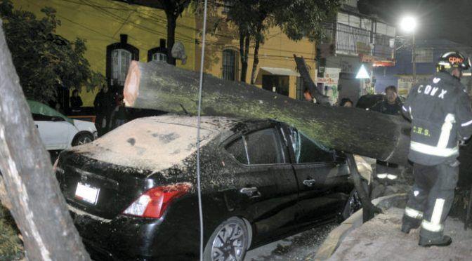 CDMX: Por basura, ocho de cada 10 inundaciones (La razón)