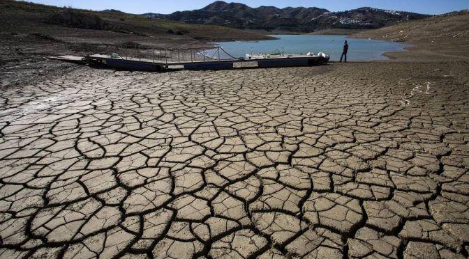 España: La sequía ya está provocando pérdidas en la agricultura y la ganadería, según UPA-UCE (Hoy)