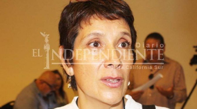 Baja California Sur: Presentan propuesta de Humedales artificiales para limpiar de aguas residuales el estero (El independiente)