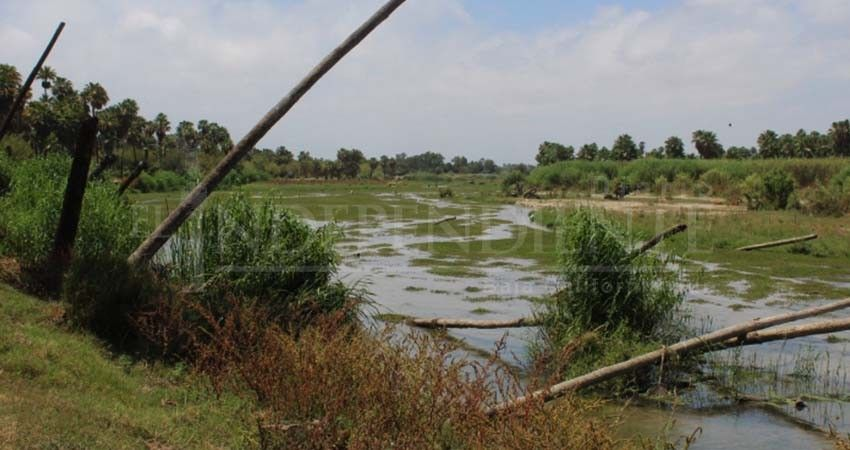 Baja California Sur: El Estero si esta contaminado por derrames de aguas negras, confirma Coepris (Diario el Independiente)