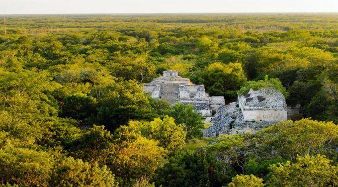 México: Se pierde el 70 por ciento de selvas y bosques en el país: investigadores (El Universal)