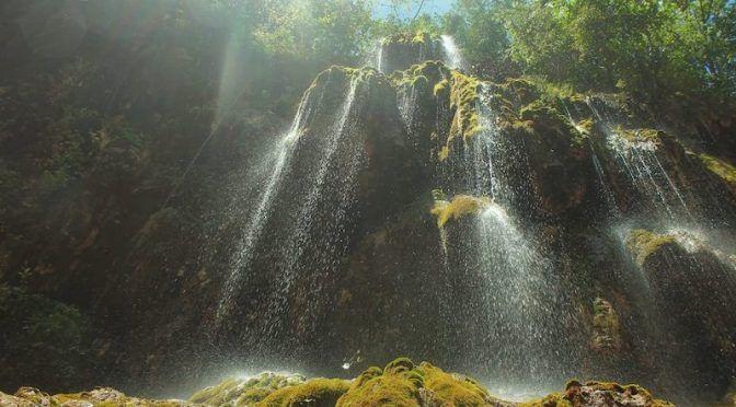 Propiedades del agua que mejoran la salud (La Capital)