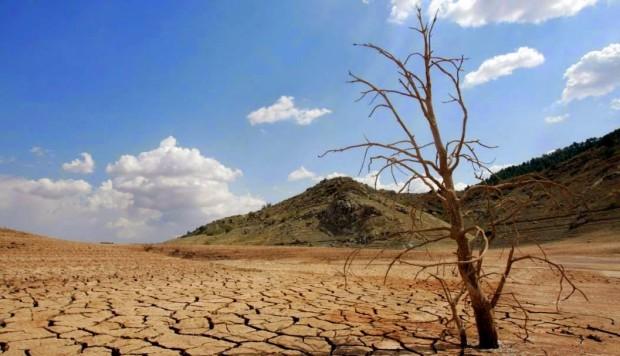 Estudio: humanidad podría desaparecer en 2050 por cambio climático (Milenio)