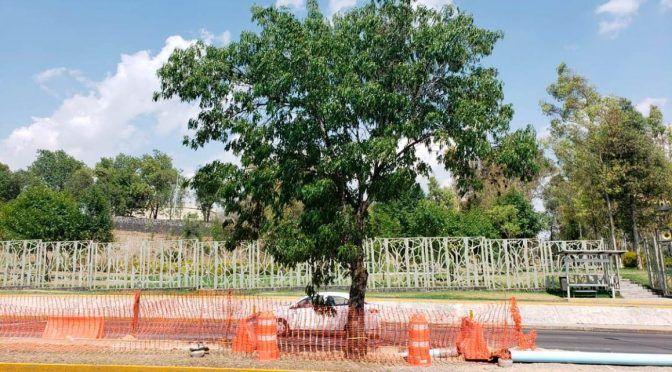 Puebla: Por un amparo o la movilización podrían detener a empresa de agua en los fuertes, señala experto (La jornada de oriente)
