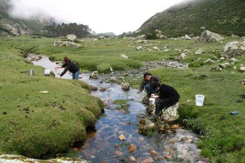 Perú: La recuperación de sistemas de agua pre-incas podría solventar la escasez en la región costera (Noticias de la Ciencia)