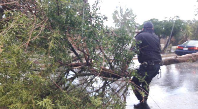 Coahuila: Atiende Gobierno Municipal daños por lluvia y ventarrones (La Prensa)
