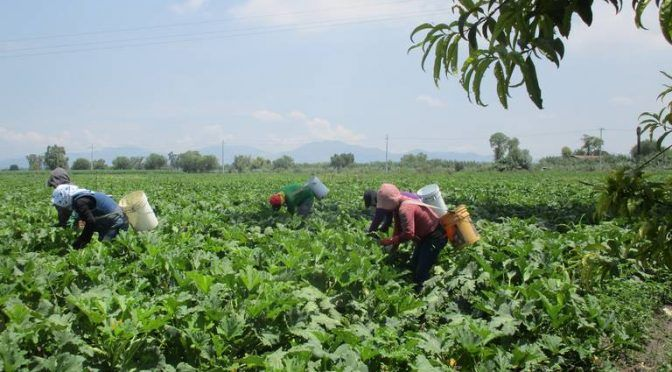 Hidalgo: Sin aguas residuales no hay vida (El Sol de Hidalgo)