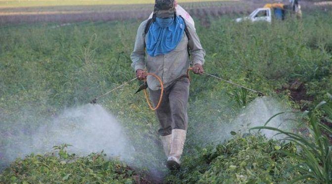 San Luis Potosí: Abonos y fertilizantes contaminan el agua (inforural)
