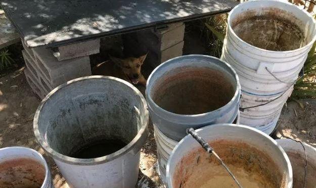 Sonora: Pipas no alcanzan para surtir a zonas sin agua en Navojoa (El Imparcial)