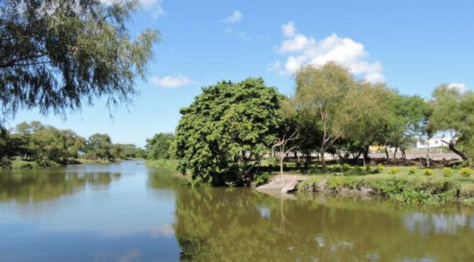 Tamaulipas: Piden revisar efectos de actividad agrícola en cuerpos de agua (El Sol de Tampico)