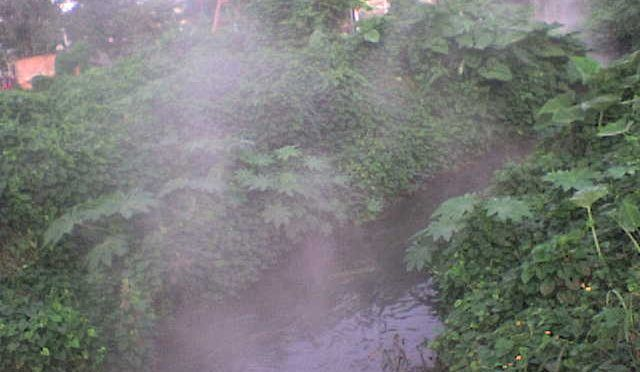 Veracruz: Afecta emanación natural de crudo (La opinión de poza rica)