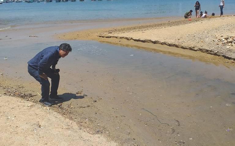 Colima: Detecta y clausura CAPAMA tres descargas de aguas negras en playa Manzanillo (El Sol de Acapulco)