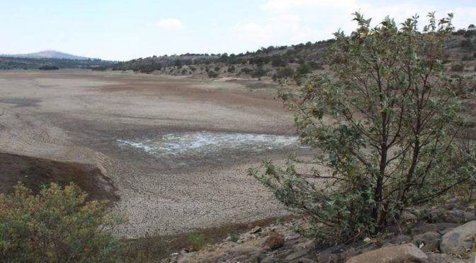 Tlaxcala: Secas presas y ríos en Zapata y Terrenate (El Sol de Tlaxcala)