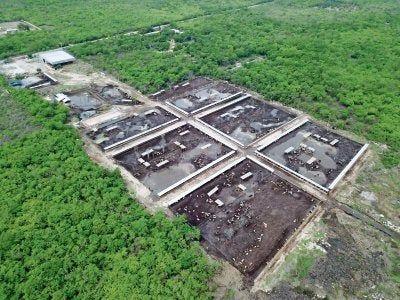 Yucatán: Una granja contamina (El Diario de Yucatán)