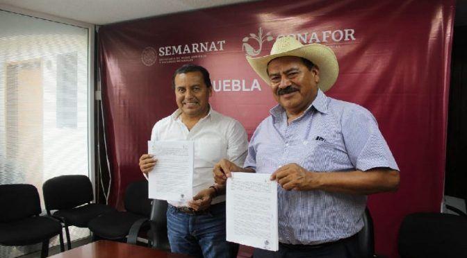 Puebla: Impulsan la conservación de corredor biológico (revista única)