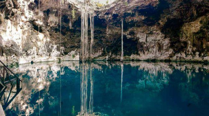 Yucatán: Dañan medio ambiente las empresas porcícolas (La tribuna)