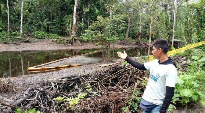 Perú: La maldición del petróleo envenena a los indígenas de la Amazonía peruana (Biodiversidad LA)