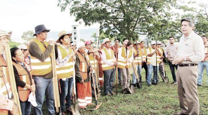 Chiapas: Reforestarán Libramiento Sur Y Norte De La Ciudad Con Plantas Nativas (Diario Ultimatúm)