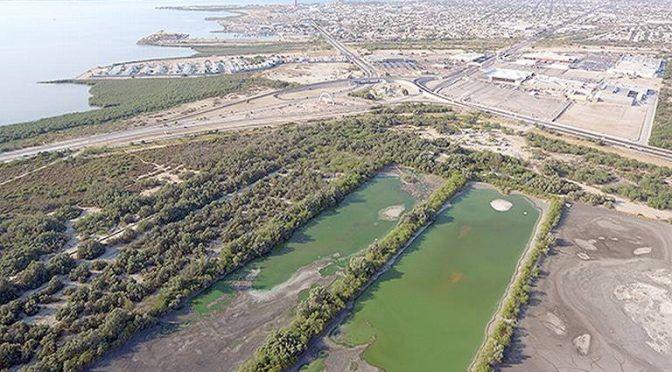 Baja California Sur: Fypasa provoca riesgo ambiental (El sudcaliforniano)