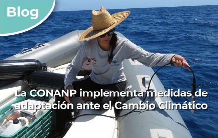 CDMX: La CONANP implementa medidas de adaptación ante el Cambio Climático (Gobierno de México)