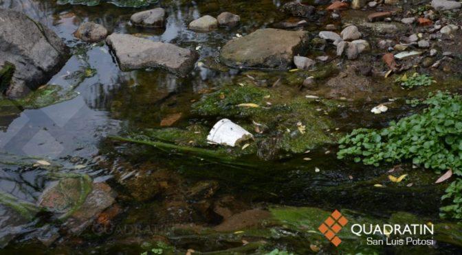 San Luis Potosí: Habitantes de Escalerillas consumen agua contaminada (Quadratin)