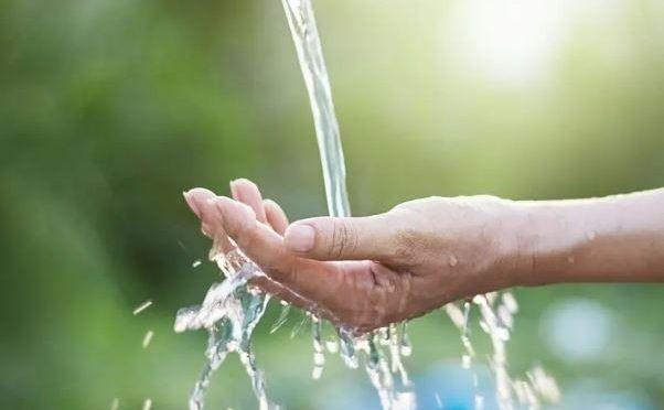 En el Día Mundial del Medio Ambiente: importancia del agua y dos consejos para protegerla (HSB Noticias)