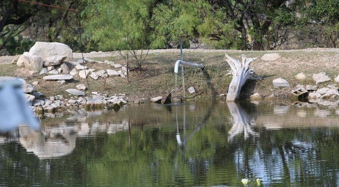 Coahuila: Mal uso del agua pone en riesgo los mantos acuíferos (Vanguardia)