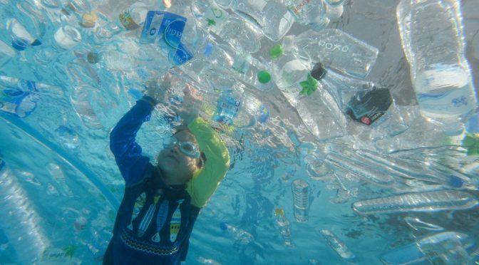 En Día Mundial de los Océanos, Sader destaca labor mexicana (La Jornada)