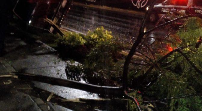 Guanajuato: cierran vialidades por intensa lluvia en León (Milenio)