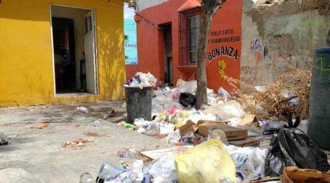 Tamaulipas: Viven comerciantes entre aguas negras. Soportan locatarios fétidos olores (El mañana)