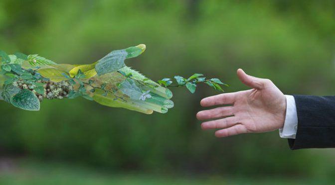 México: Semarnat invita a jóvenes a ser críticos ecológicos (La jornada)