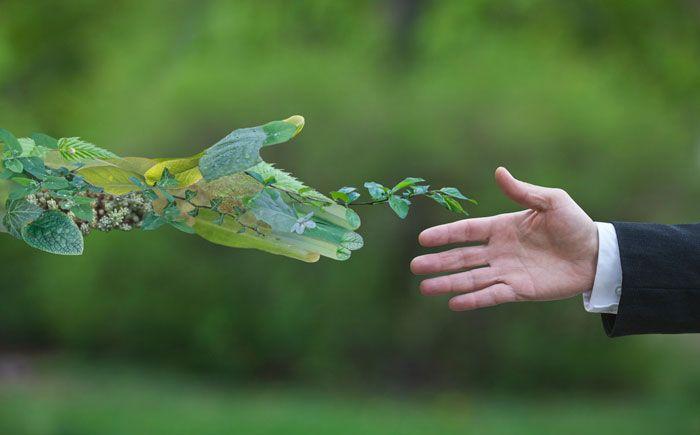 El Medioambiente: eje transversal de las sinergias entre empresas e instituciones (Murciaeconomía)