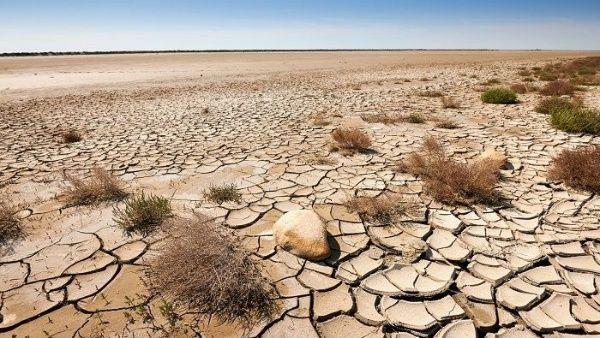 Conoce el impacto climático en la sequía y la desertificación (Telesur)