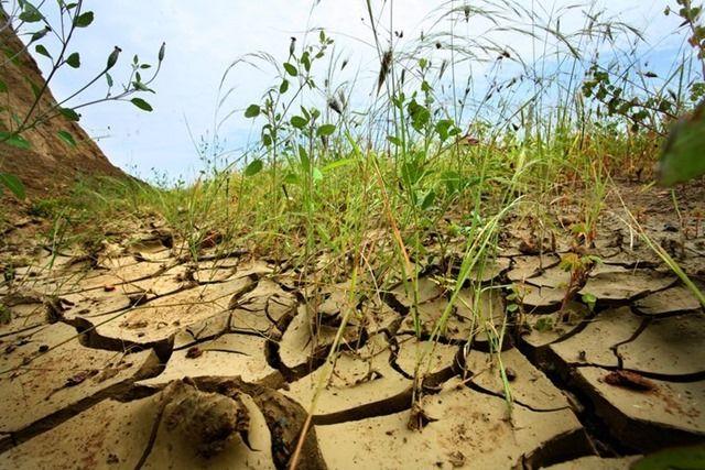 17 de junio Día Mundial de Lucha contra la Desertificación