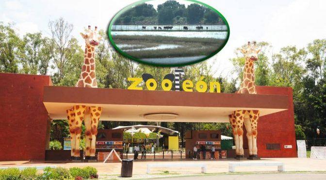 Guanajuato: Zoo León busca impulsar la reutilización del agua (El Sol de León)