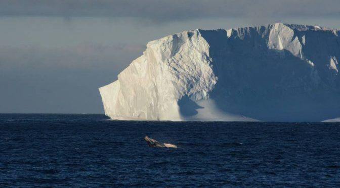 El increíble plan de Sudáfrica: 'secuestrar' un iceberg para convertirlo en agua potable (El Confidencial)