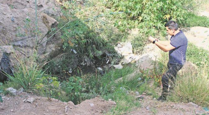 Jalisco: Vecinos de Zapopan lidian con moscos por agua estancada (El Informador)