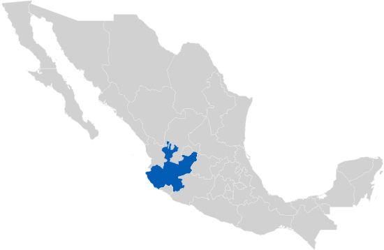 Jalisco: Acuíferos vedados detonan concesiones en el mercado negro (Informador.mx)