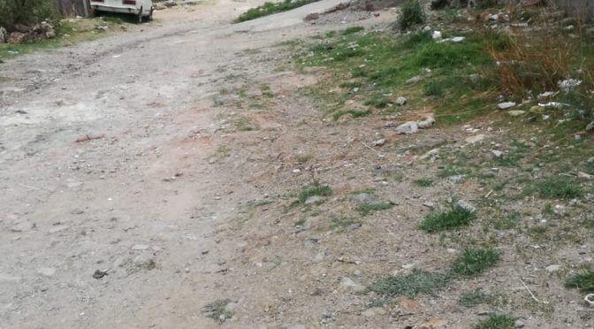 Guanajuato: Batallan en Barranca de Venaderos por falta de agua (Milenio)