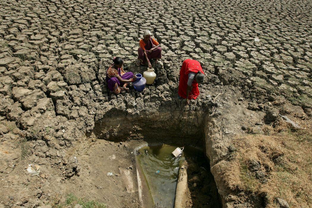 Una ola de calor en la India causa la muerte de decenas de personas (The New York Times)